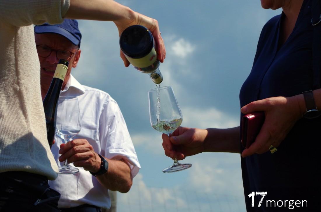 1-Weinwanderung-Brandenburg-17morgen-030