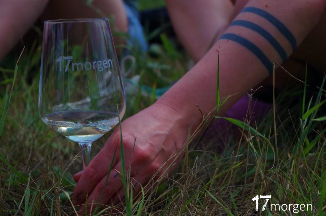 1-Weinwanderung-Brandenburg-17morgen-041