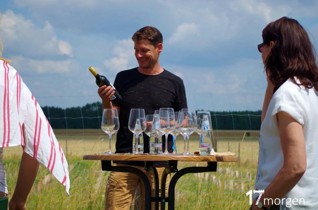 1-Weinwanderung-Brandenburg-17morgen-042