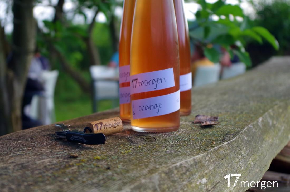 1-Weinwanderung-Brandenburg-17morgen-083